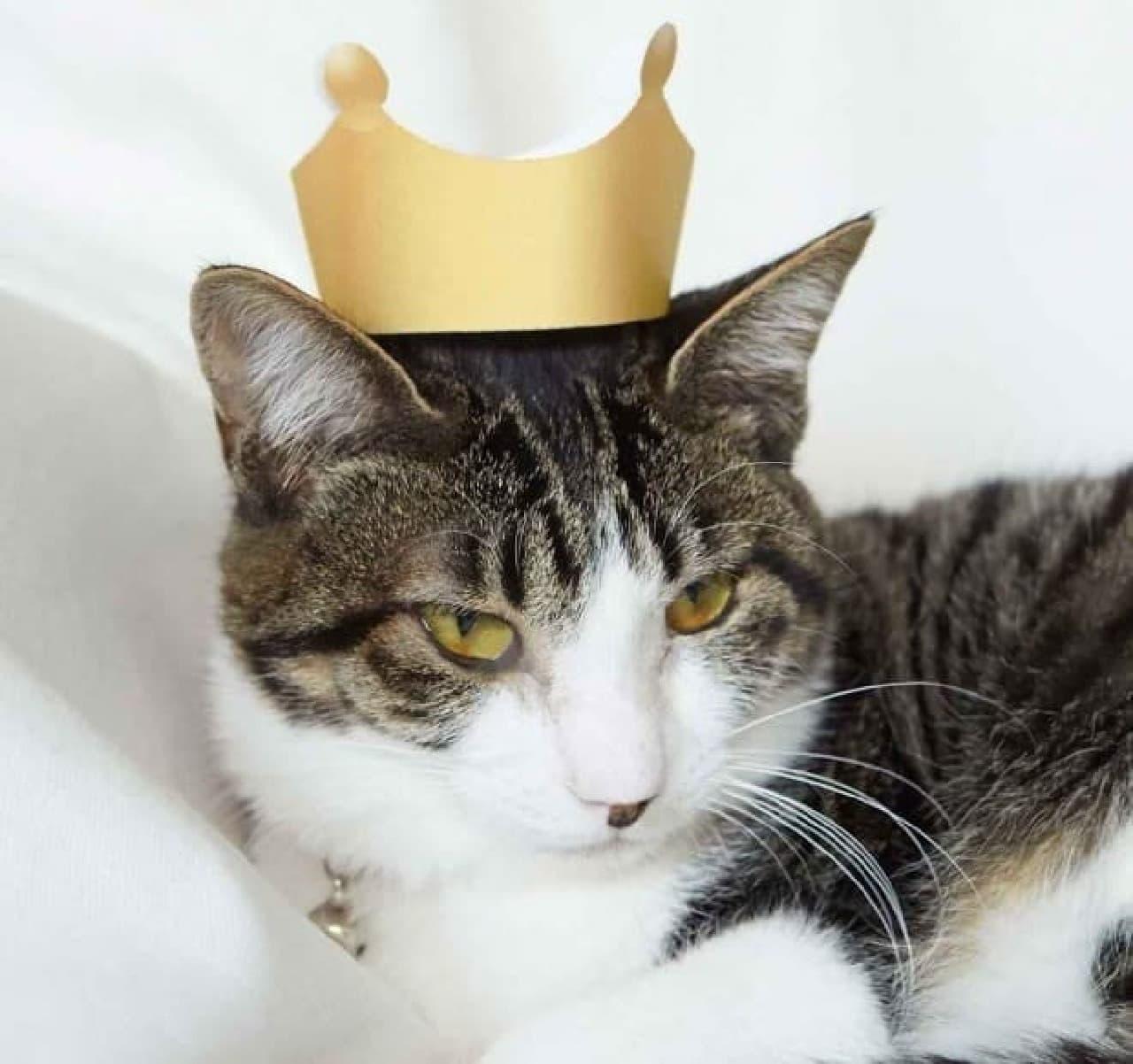 お風呂形つめとぎ付属の王冠