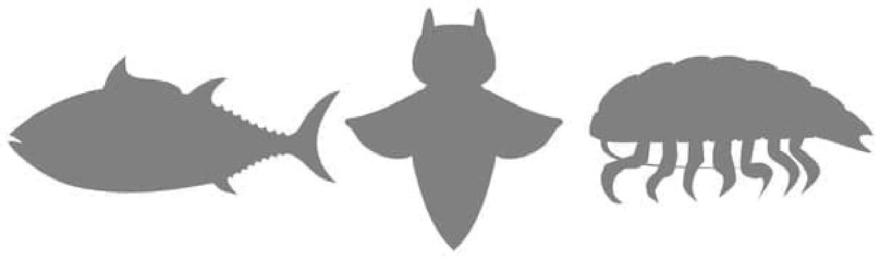 サメの形のティーバッグ
