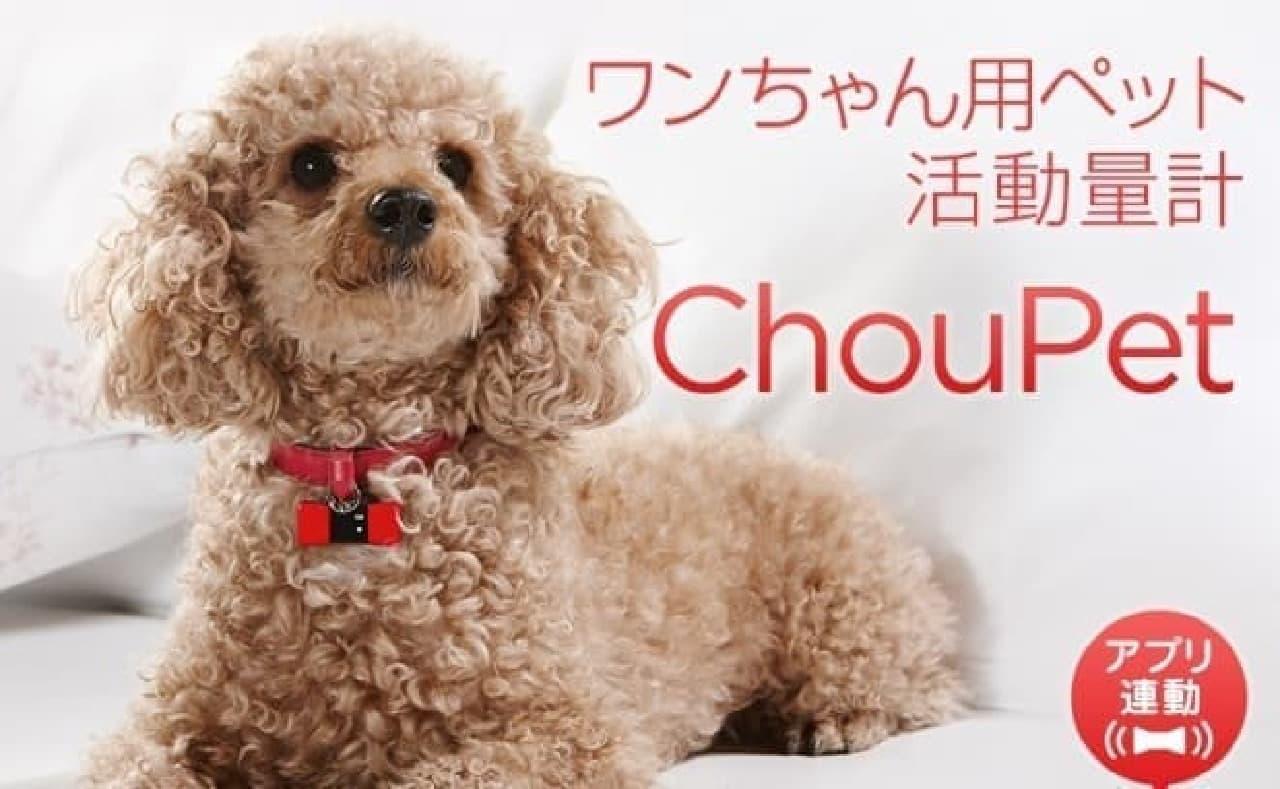 ペット用活動量計「ChouPet(シューペット)」