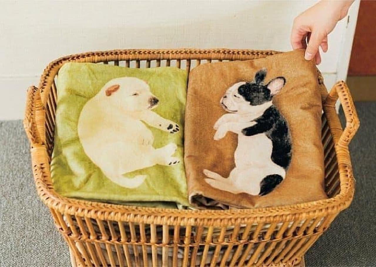 YOU+MORE!フカフカの寝床を発見! 子犬が寝てるバスタオルの会