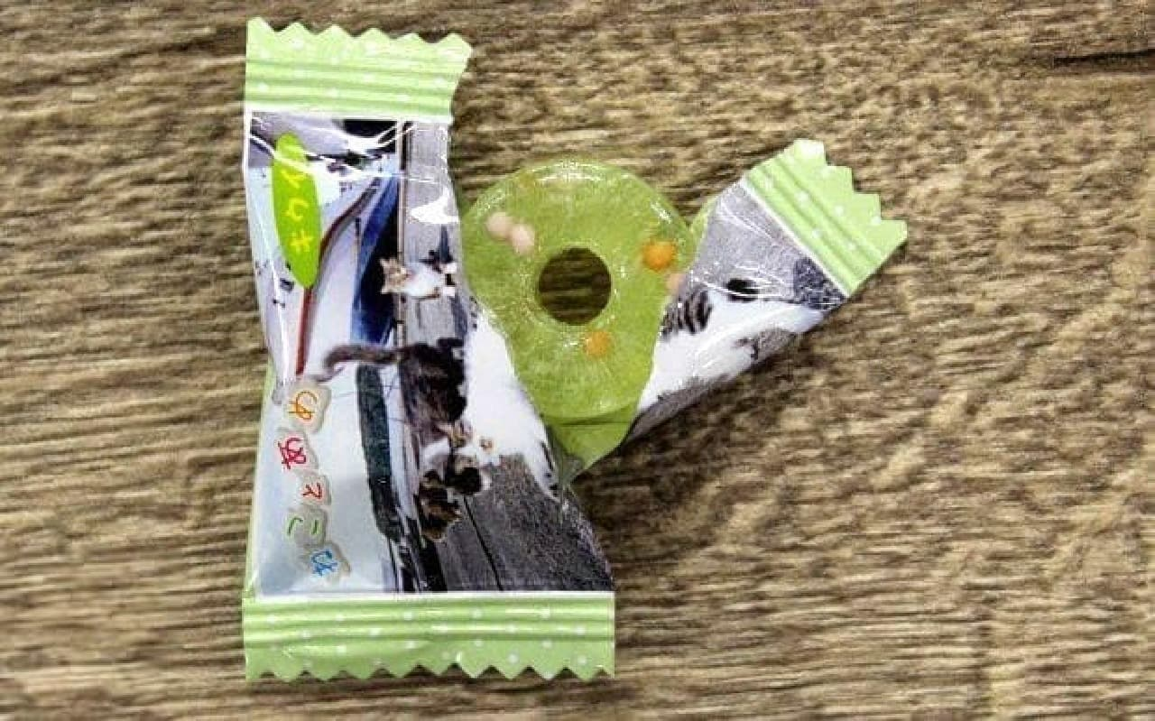 岩合光昭さんのネコ写真がパッケージ パインアメの「ねことあめ」