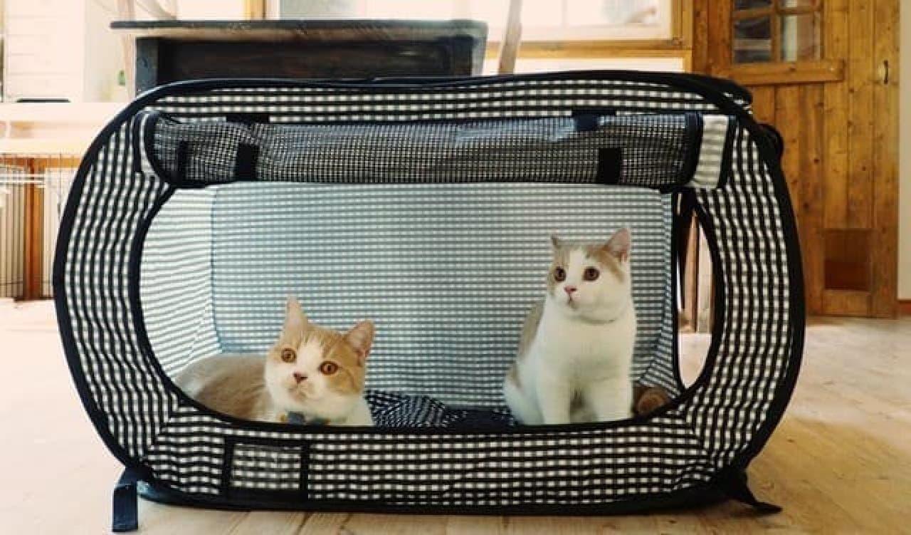 ネコのための防災グッズ「猫壱 ポータブル ケージ」がマイナーチェンジ!