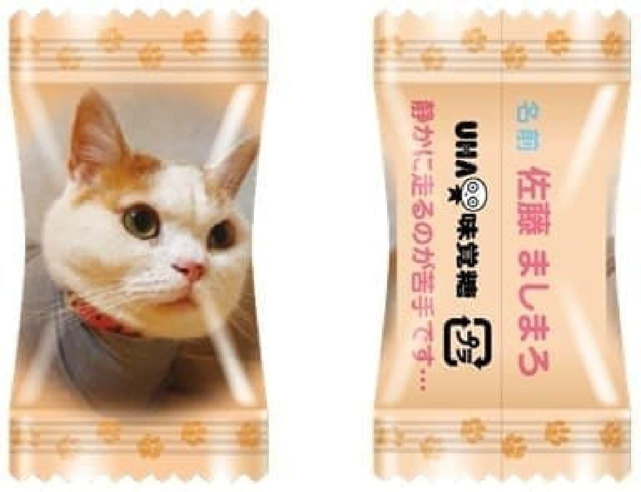 UHA味覚糖「にゃんコレ」