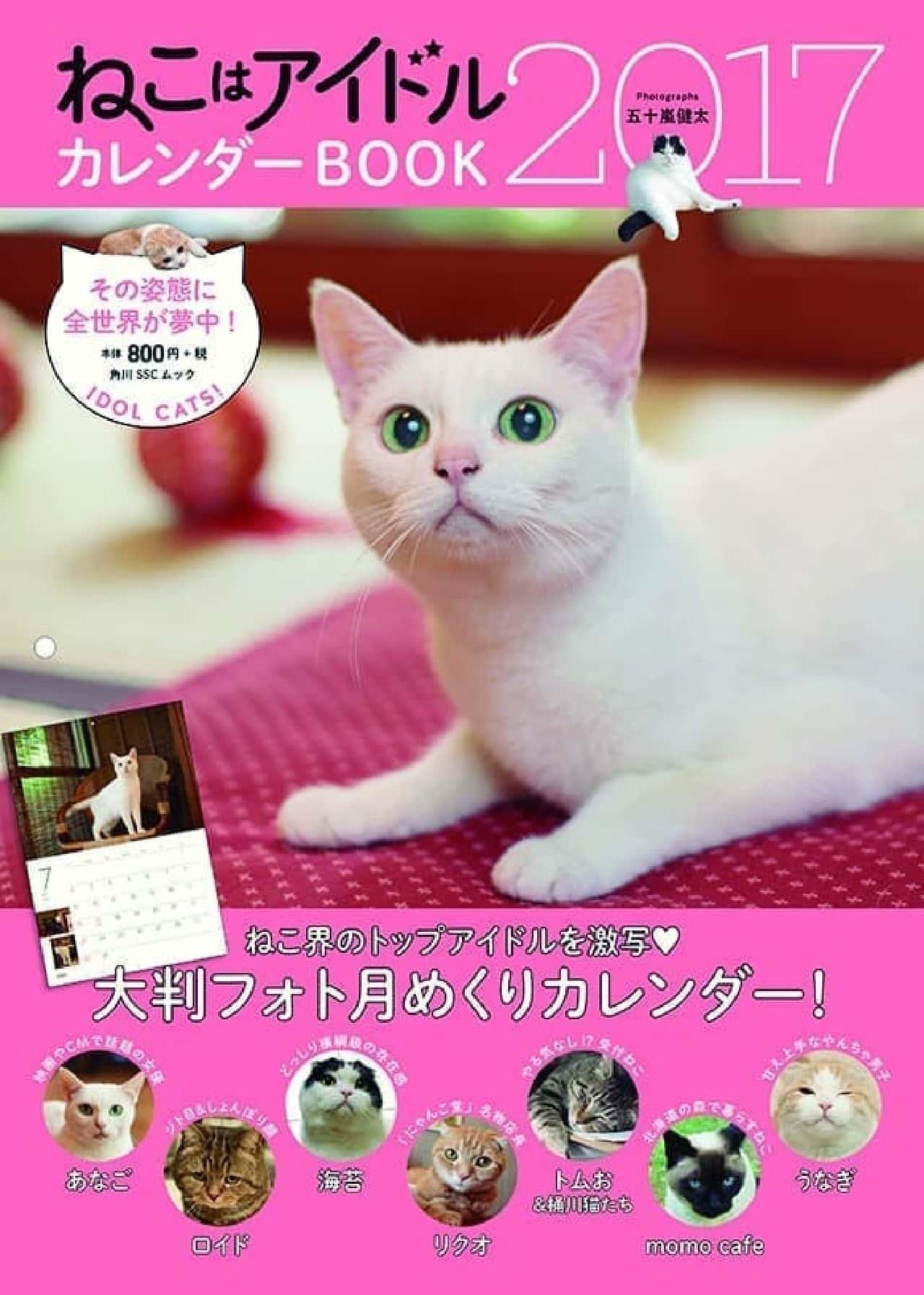 『飛び猫』の五十嵐健太さんによる『ねこはアイドル カレンダーBOOK2017』