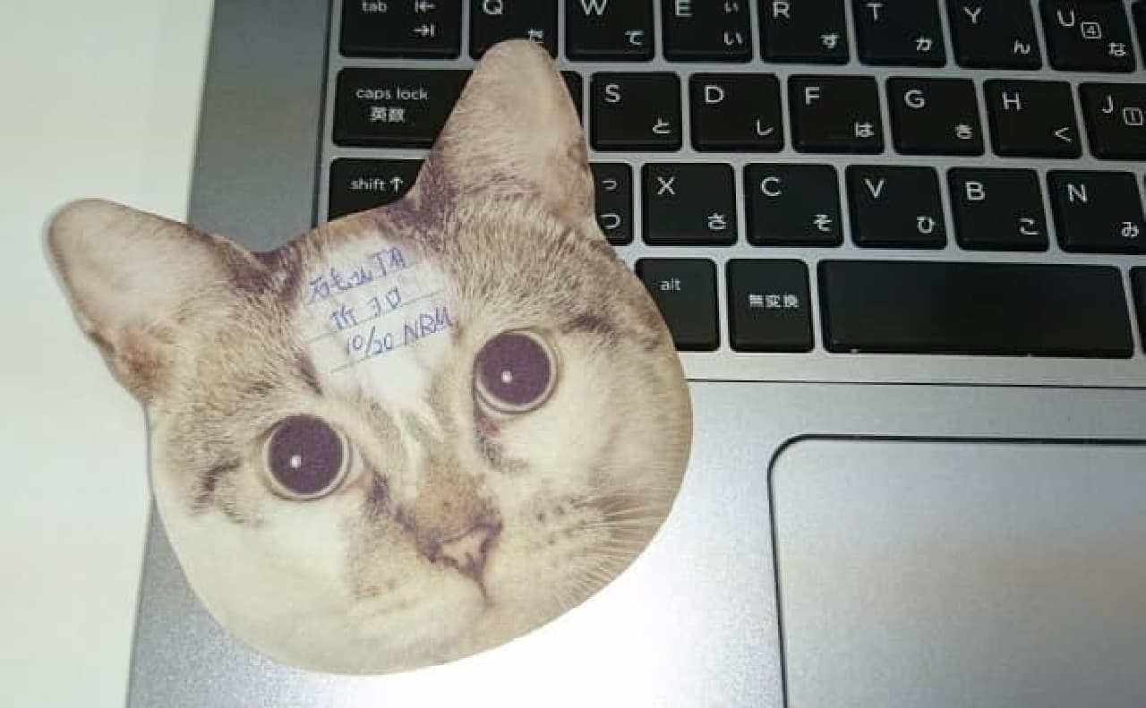 「猫のひたい 付箋メモ」に2匹の仲間が加わった!