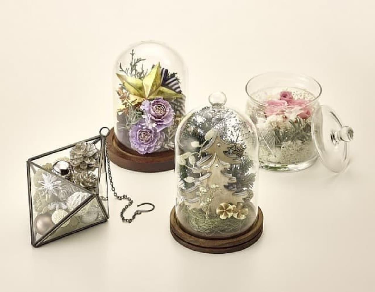 日比谷花壇「クリスマステラリウム」