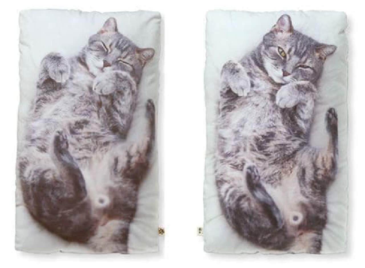 うだまさんちの猫とコラボした「もふもふ等身大抱きまくら」リクくん&ハルくんバージョン