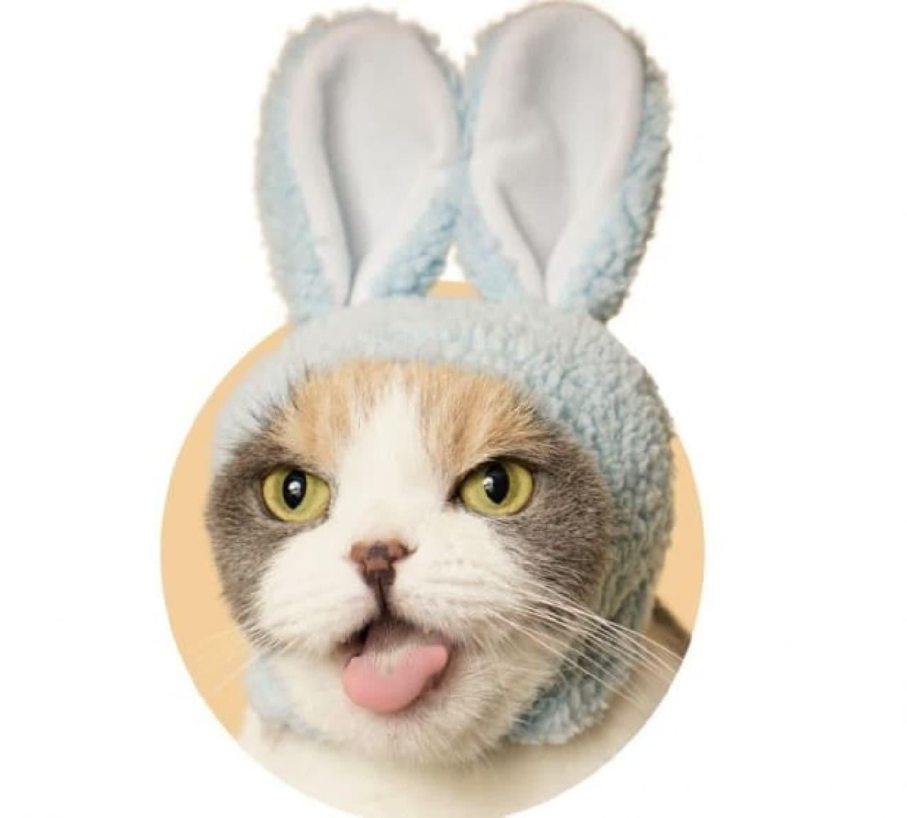 ネコ向けのかぶりものガチャ「かわいい かわいい ねこうさぎちゃん」発売