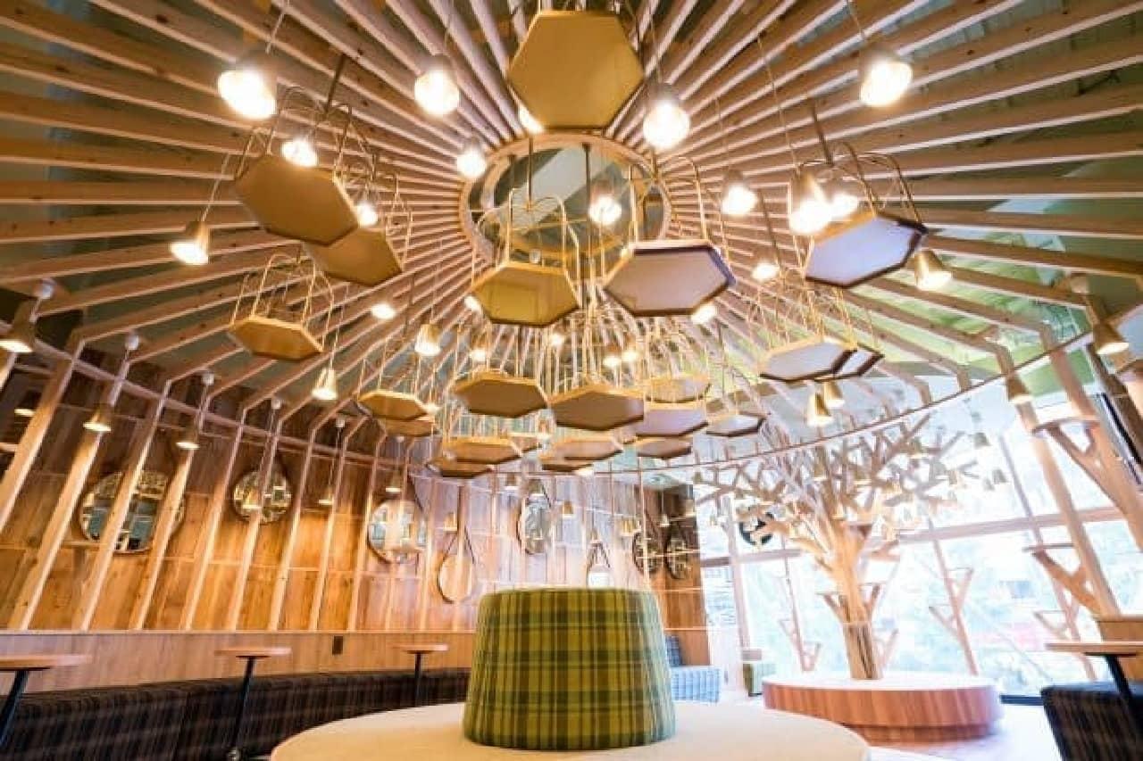 ネコカフェ「MoCHA」が、原宿竹下通りに6店舗目をオープン!