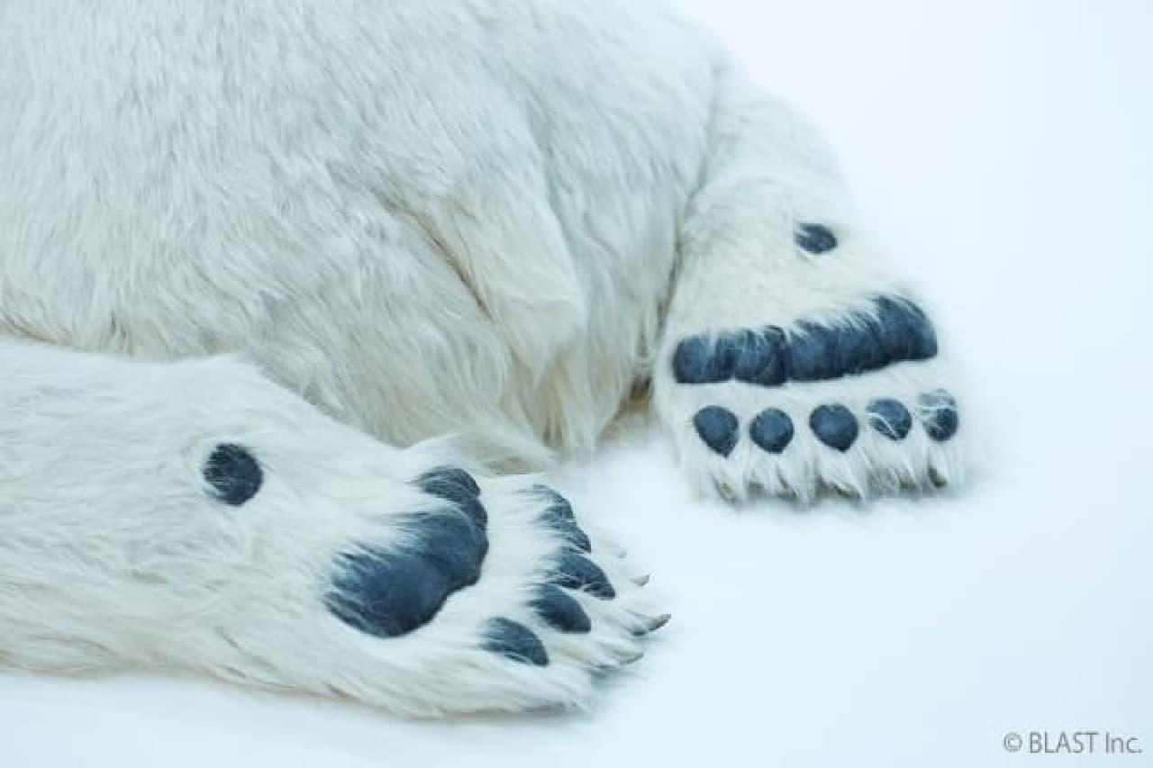実物大の動物美術造型「Animals As Art」シリーズ、シロクマ