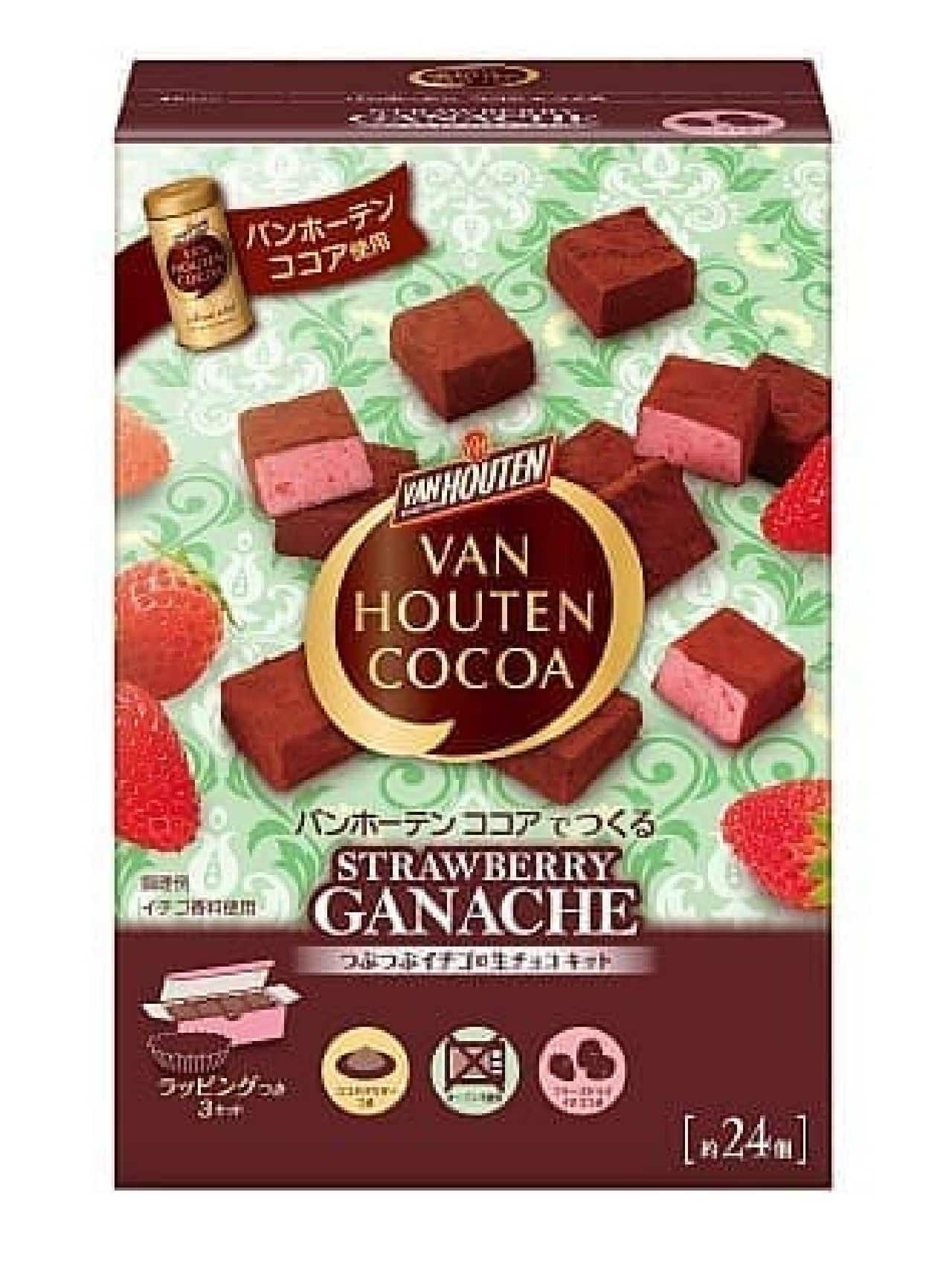 バンホーテン ココアでつくる つぶつぶイチゴの生チョコキット