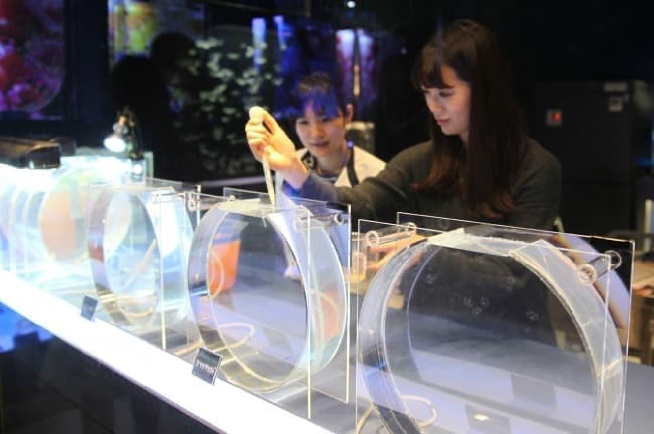 すみだ水族館「ふわきゅん、クラゲまつり」