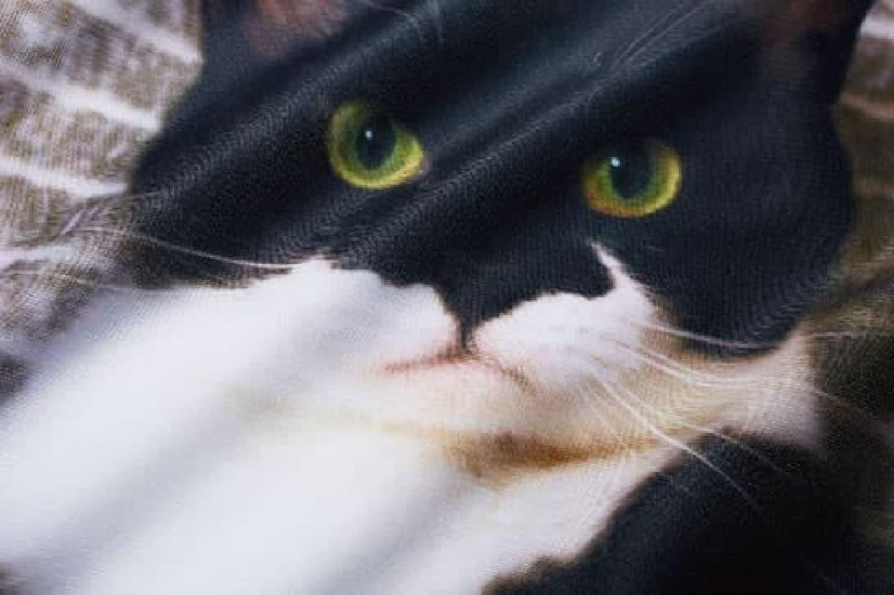 フェリシモ猫部「ギズモさんの枕カバー」