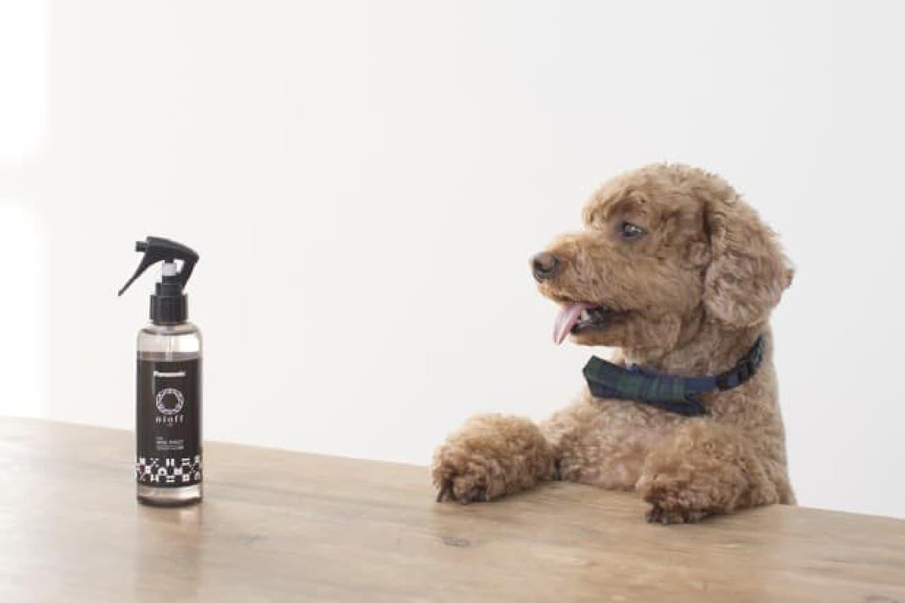 犬のトイレまわり向け消臭剤「nioff(ニオフ)FOR DOG TOILET」