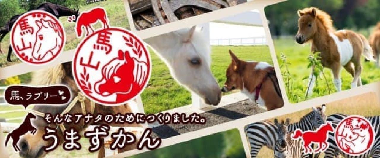馬好きのためのはんこ「うまずかん」