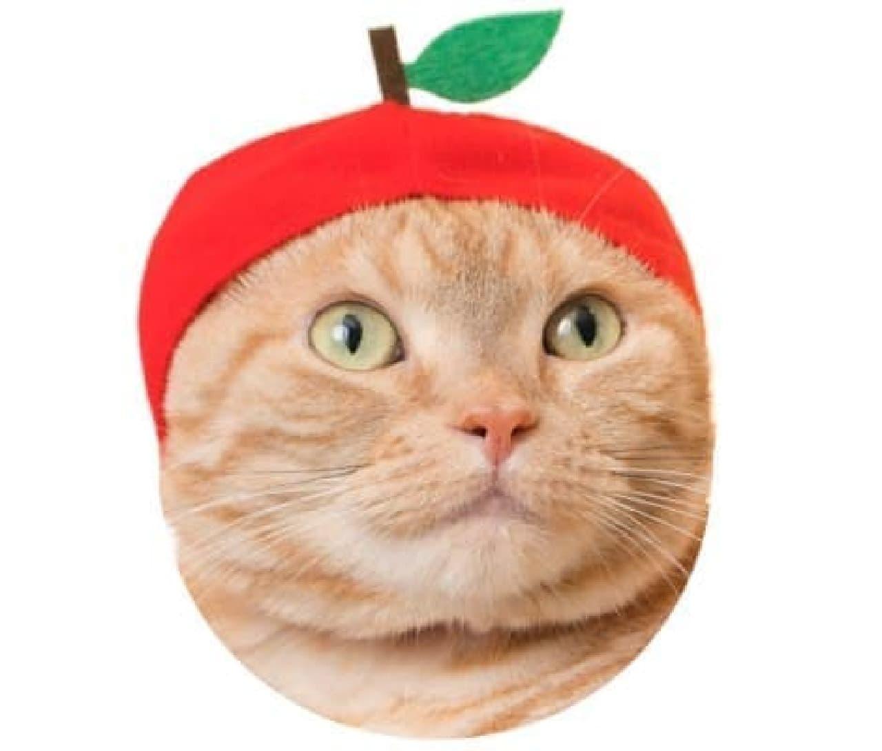 """""""ネコ向け""""のかぶりもの「かわいい かわいい ねこフルーツちゃん」"""