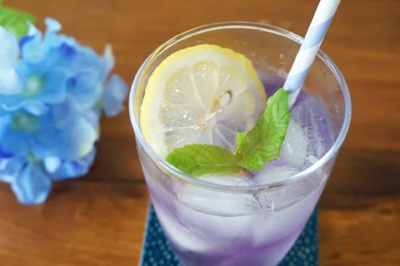 青いハーブティーで紫陽花ドリンク