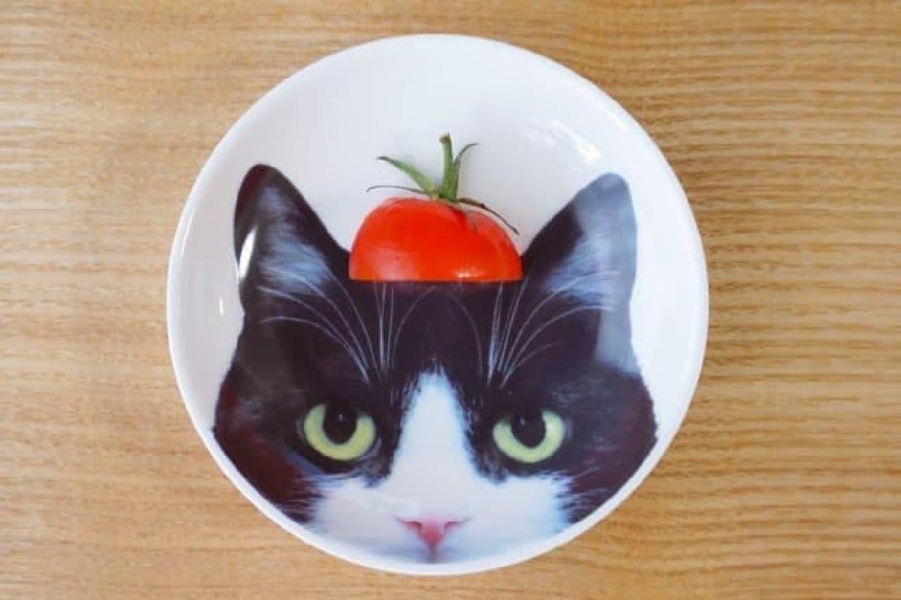 セリアのネコフォト豆皿