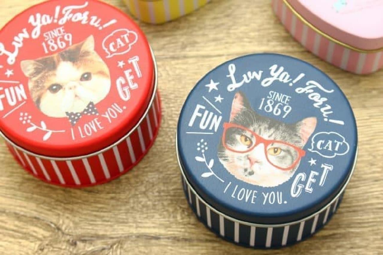 100均の可愛い缶、猫のデザイン