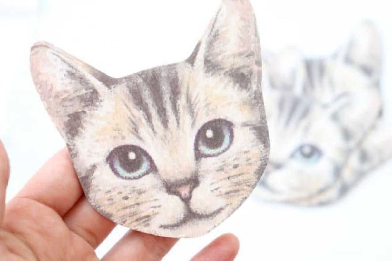 キャンドゥ 猫 紙皿 紙コップ