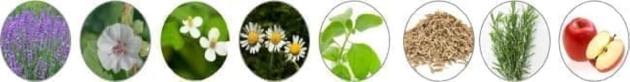 イマニの天然植物成分