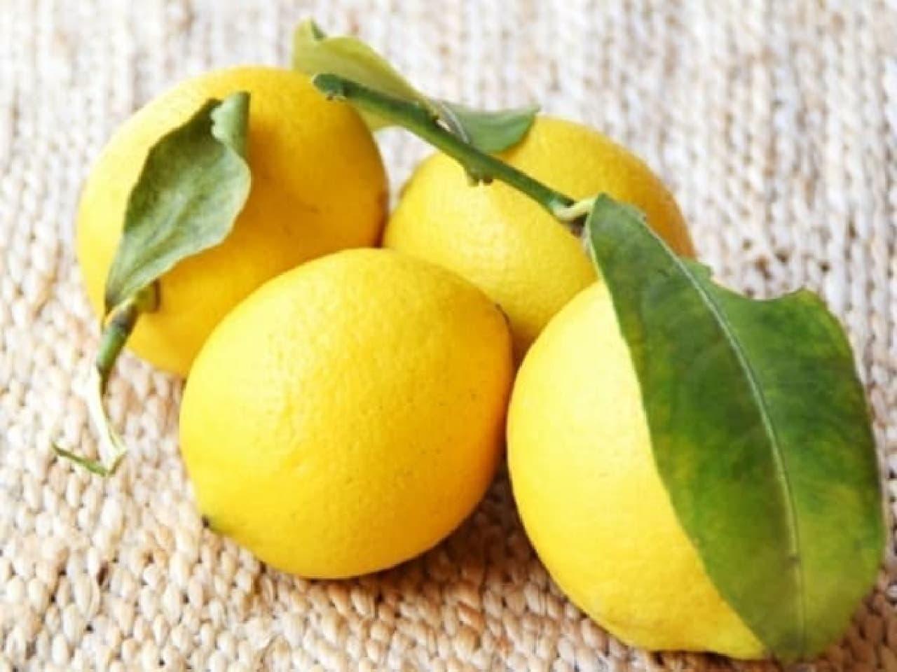 瀬戸内産のレモン