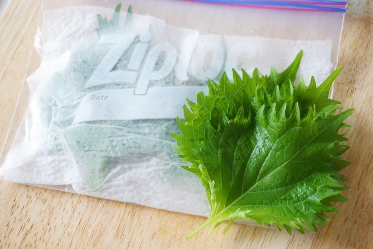 鮮度が長持ちする大葉の保存方法