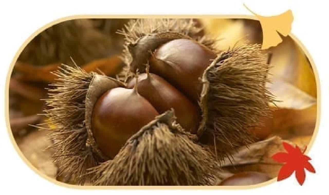「2020秋限定 プレミアムルルルン紅葉(色づく季節の香り)」の栗