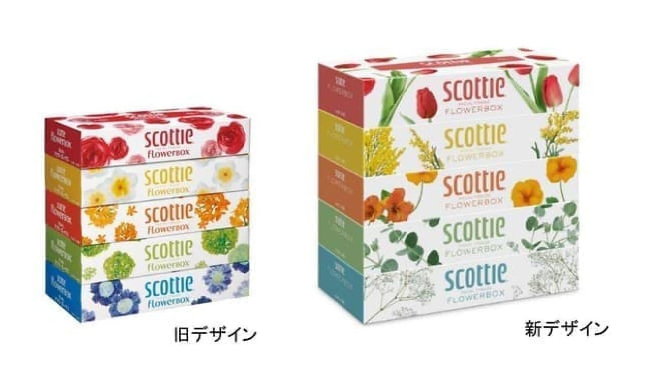 スコッティ ティシュー フラワーボックス 5箱パック