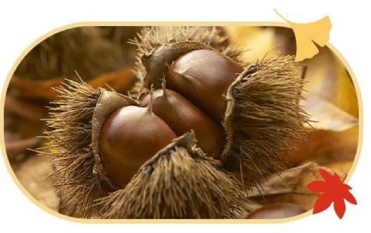 「秋限定 プレミアムルルルンもみじ(色づく季節の香り)」の栗イメージ