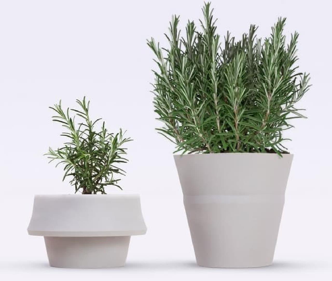 「Fold Pot」はサイズ変更が可能な植木鉢
