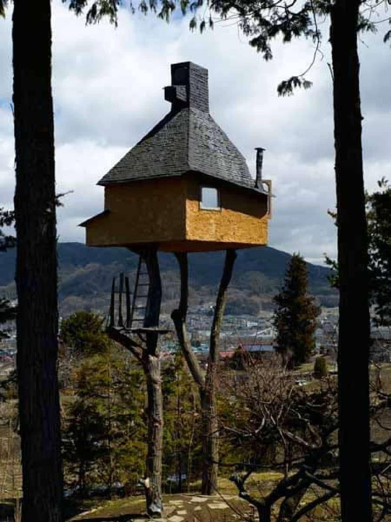 高過庵の高さは地上約6メートル  それを支えるのは2本の木  …なんだかスナフキンも住んでいそう??