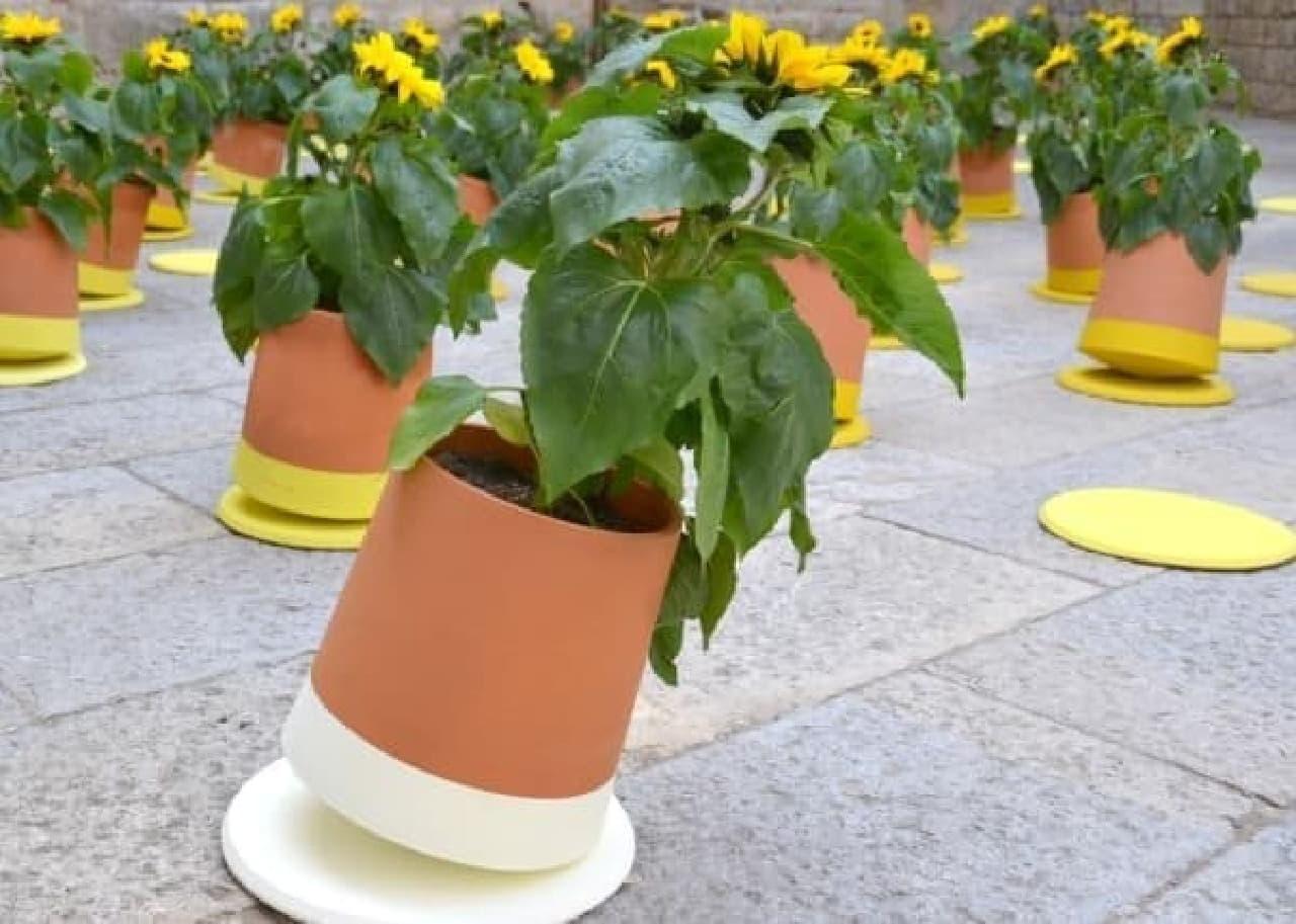動く植木鉢「Voltasol」