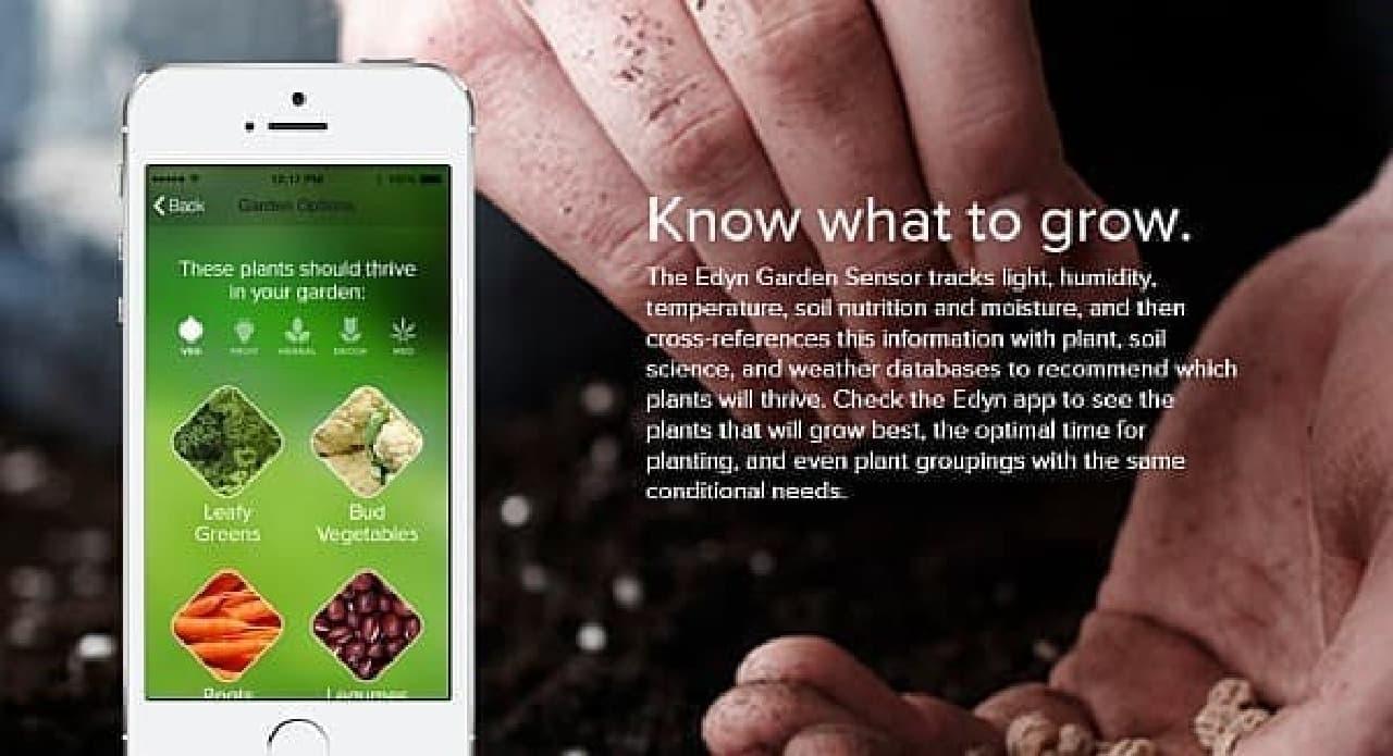 センサーは土中の養分を測定し、もっとも適切な植物を指摘する